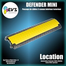 DEFENDER - MINI